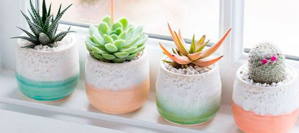 Gu a para la decoraci n de interiores con plantas nuevo sur for Ideas para decorar interiores con plantas